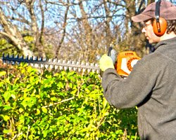 landscaper performing port perry hedge trimming services