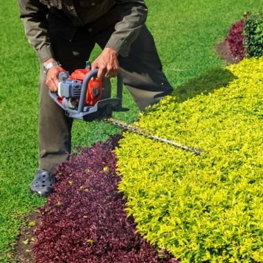 landscaping contractor trimming a shrub