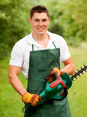 professional landscaper holding hedge trimming tool while providing hedge trimming tips