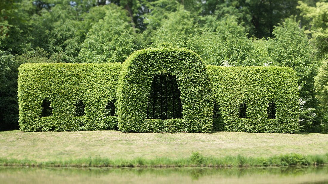 beautifully trimmed hedge