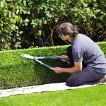 Hedge Trimming Tips