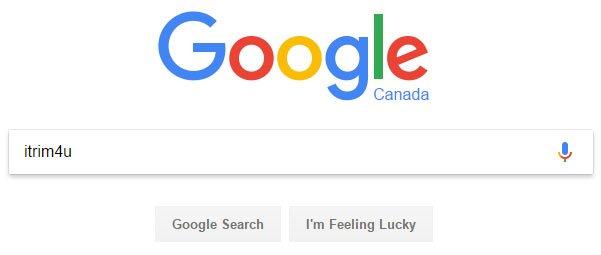 using google search to find itrim4u