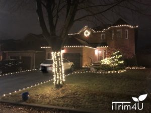 christmas light installation by itrim4u