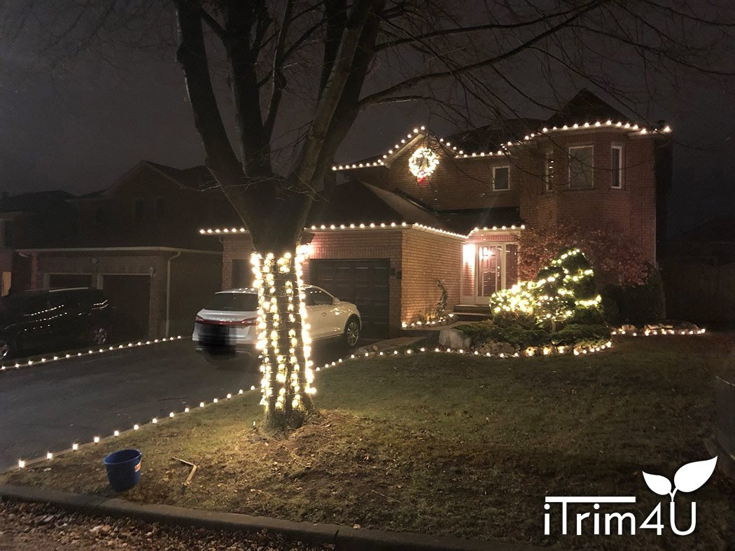 christmas light installation by itrim4u