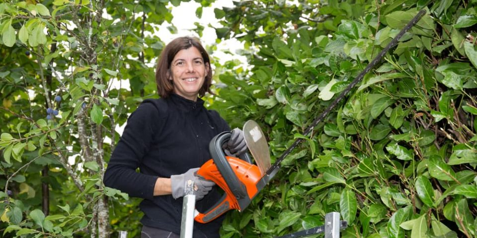 woman getting ready to trim a tall hedge with an electric hedge trimmer